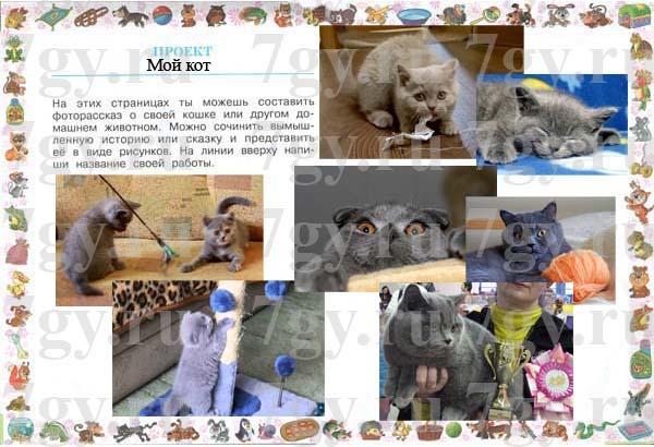 Проект по окружающему миру фоторассказ о животном