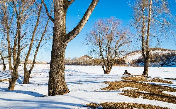 Зима с весной встречается