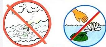 Придумайте и нарисуйте условные знаки, показывающие охрану природных сообществ