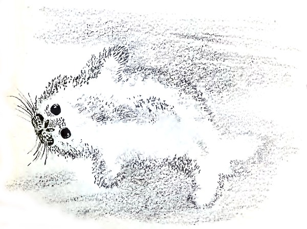 Г.Я.Снегирёв. Маленькое чудовище. Рассказы. Читать онлайн с картинками или скачать pdf