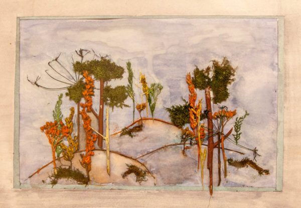 Пейзаж из сухих листьев
