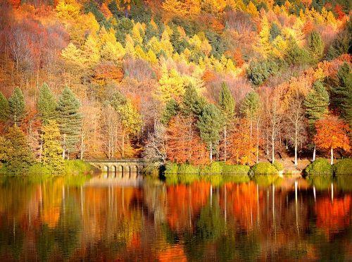 Осенние явления природы