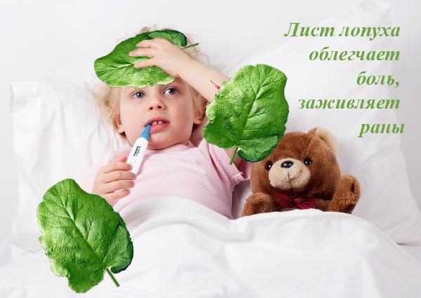 Презентация для детей Лекарственные растения. Лопух