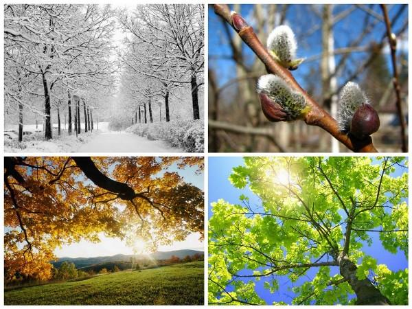 Названия зимних, весенних, осенних и летних месяцев, связанные с явлениями живой и неживой природы, с трудом людей