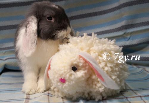 Пасхальный кролик из помпонов