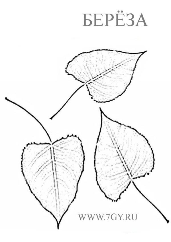 desenho da árvore com folhas