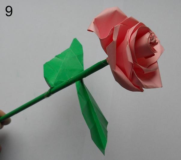 Объемная роза из бумаги
