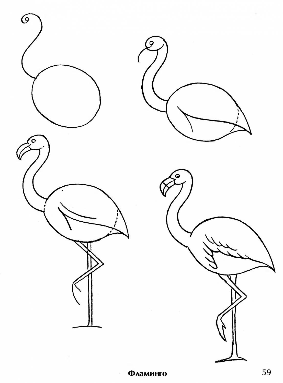 Рисование карандашом птиц поэтапно